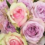 muttertag Geschenke 150x150 Blumenfreitag bei uns